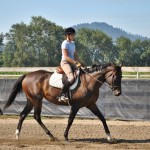 Libby, Sporthorse in Oregon For Sale