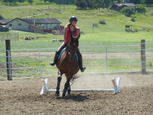 Carrie Allen instucting a jumping clinic