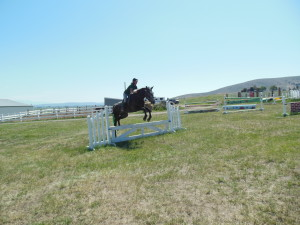 Horseback riding lesson with In Motion Sport Horses, LLC