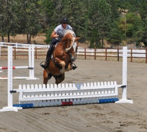 jumping with In Motion Sport Horses