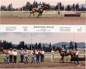 In Motion Sport Horses