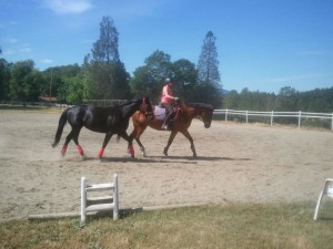 Ponying at In Motion Sport Horses