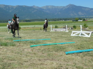 Schooling with In Motion Sport Horses