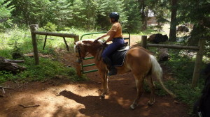 Horse Camping and trail riding with Carrie Allen
